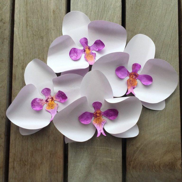Орхидеи из бумаги своими руками шаблоны
