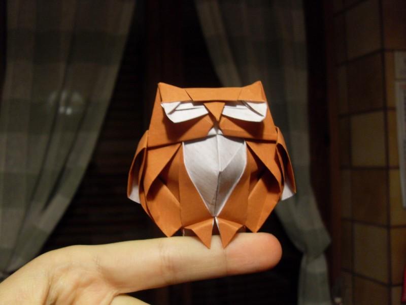 Kak-sdelat-sovu-origami-15 Как сделать сову оригами: видео сборки и мастер-класс для начинающих