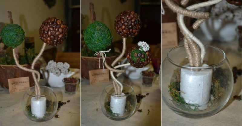 Как сделать топиарий из кофейных зерен