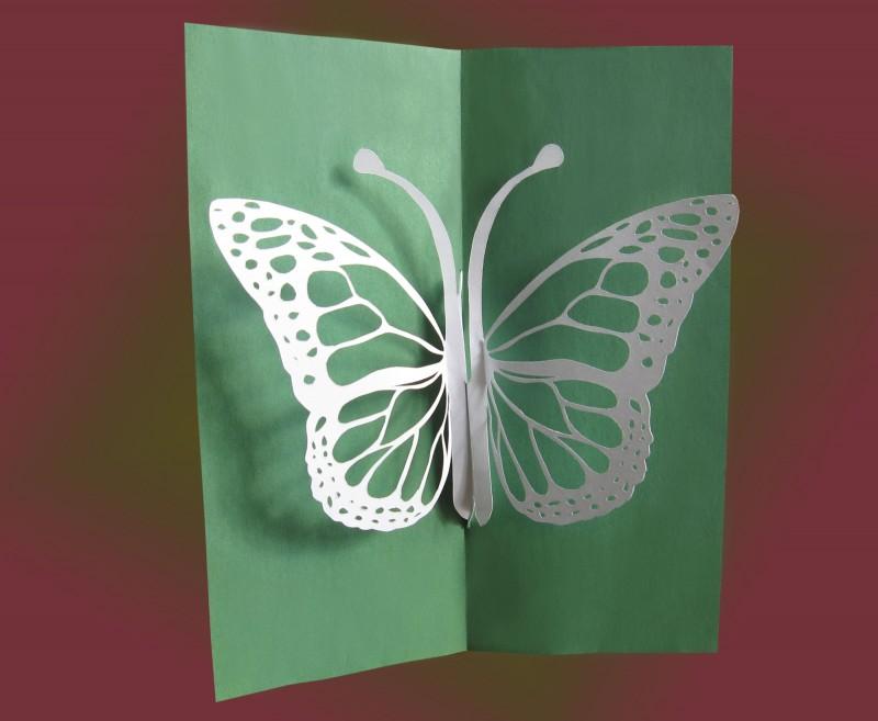 Надписью, открытка бабочка на цветке своими руками